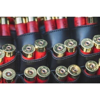 boite à munition: les plus populaires.